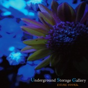 Underground Storage Gallery