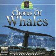 鯨のコ-ラス