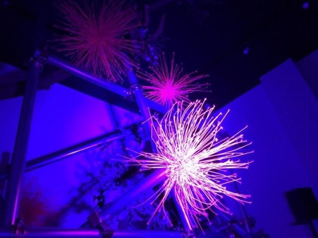 Kachōfūgetsu ~fireworks~