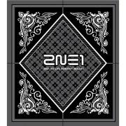 2NE1 1ST LIVE CONCERT [ NOLZA! ]