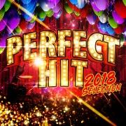 PERFECT HITS -2018 selection-