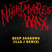 Deep Shadows (feat. Sadie Walker)(Illa J Remix)