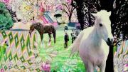 world of holiday(楽曲+MV)
