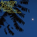 Amazon Forest Evening WAV60 (24bit/48kHz)