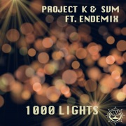 1000 Lights (feat. Endemix) [Original Extended Mix]