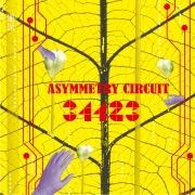 Asymmetry Circuit