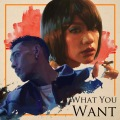 What You Want (feat. IO)