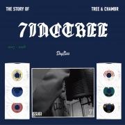 THE STORY OF 7INC TREE -Tree & Chambr-