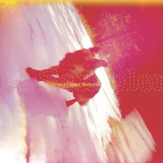Polyvinyl 2004 Sampler