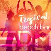 Tropical Beach Bar EDM