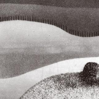 The Spell of a Vanishing Loveliness (Beach Fossils Rework)