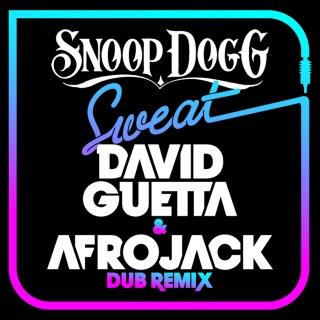 Sweat (David Guetta & Afrojack) [Dubstep Remix]