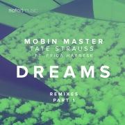 Dreams (Remixes Part 1) [feat. Frida Harnesk]