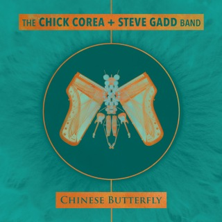 Chinese Butterfly