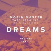 Dreams (Remixes Part 2) [feat. Frida Harnesk]