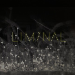 Liminal 2