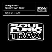 Spirit Of House (feat. An-Tonic)