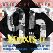 95 (Remixes II)