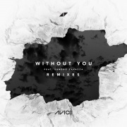 Without You (Remixes) feat. Sandro Cavazza