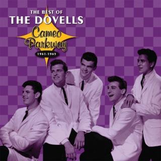 ザ・ダヴェルズ / The Best Of The Dovells 1961-1965 - OTOTOY