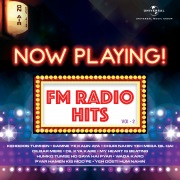Now Playing! FM Radio Hits, Vol. 2