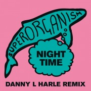 Night Time (Danny L Harle Remix)