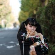 Animal's Pre-Human (with neco眠る)