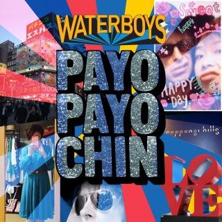 Payo Payo Chin
