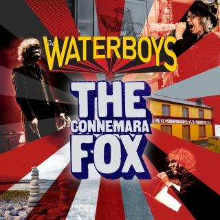 The Connemara Fox