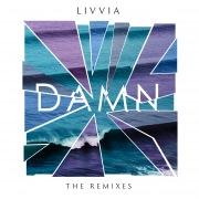 Damn (The Remixes)