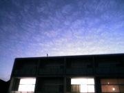 翼 (博多Deja-vu2009年2月21日バージョン)