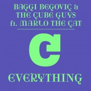 Everything (feat. Marlo the Cat) [The Cube Guys Mix]