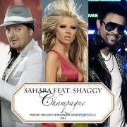 Champagne (feat. Shaggy) [Jump Smokers Radio Mix]