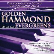Golden Hammond Evergreens