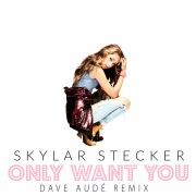 Only Want You (Dave Audé Remix)