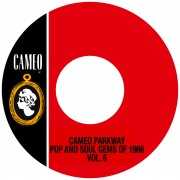 Cameo Parkway Pop And Soul Gems Of 1966 Vol. 6
