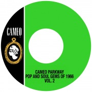 Cameo Parkway Pop And Soul Gems Of 1966 Vol. 2