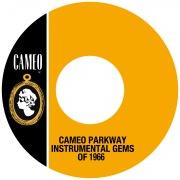 Cameo Parkway Instrumental Gems Of 1966