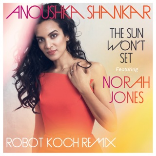 The Sun Won't Set (Robot Koch Remix)