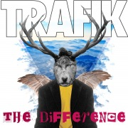 The Difference  (Remixes)