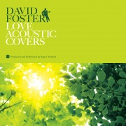 DAVID FOSTER LOVE ACOUSTIC COVERS