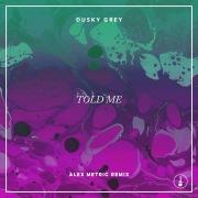 Told Me (Alex Metric Remix)