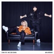 Mina bränder (feat. Anis Don Demina)