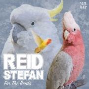 For The Birds (Original Mix)
