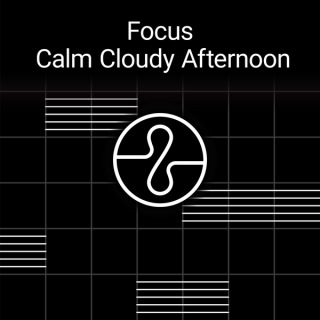 Focus : Calm Cloudy Afternoon