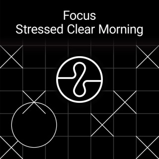 Focus : Stressed Clear Morning