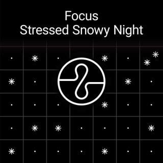 Focus : Stressed Snowy Night