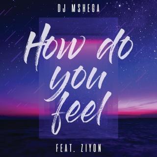 How Do You Feel feat. Ziyon