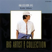 Big Artist Best Collection/柴田恭平