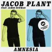 Amnesia (feat. James Newman) [Majestic Remix]
